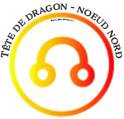 TETE DE DRAGON