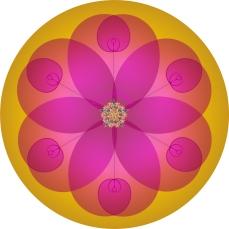 Fleur de vie Spirale rose or