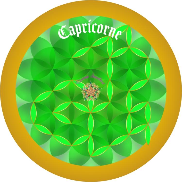 Signe Astro Fleur de vie Capricorne