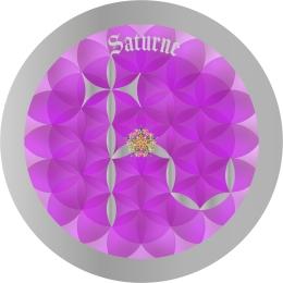 Signe Astro Fleur de vie Saturne