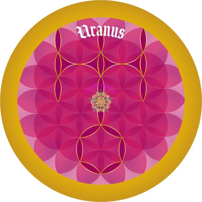Signe Astro Fleur de vie Uranus