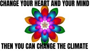 Lotus Fleur CHANGE THE CLIMATE